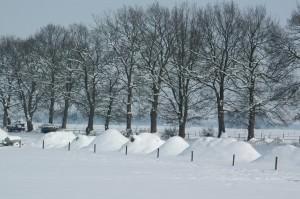 Winterlandschappen_72dpi_1280x850px_E