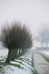 Winterlandschappen_72dpi_685x1024px_E