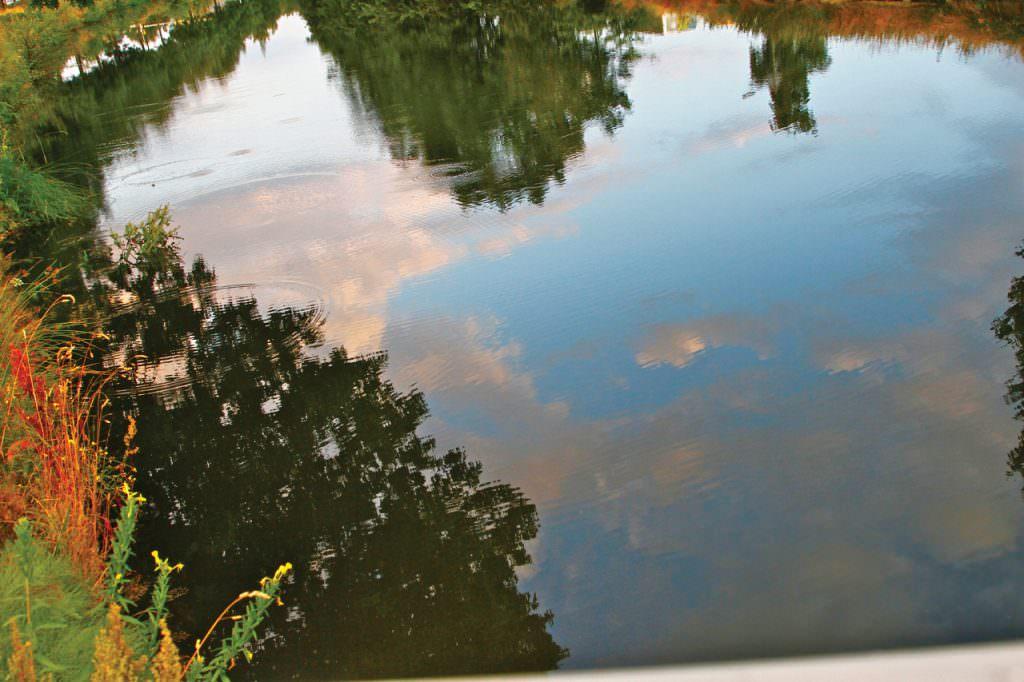 holland-autumn-3-2