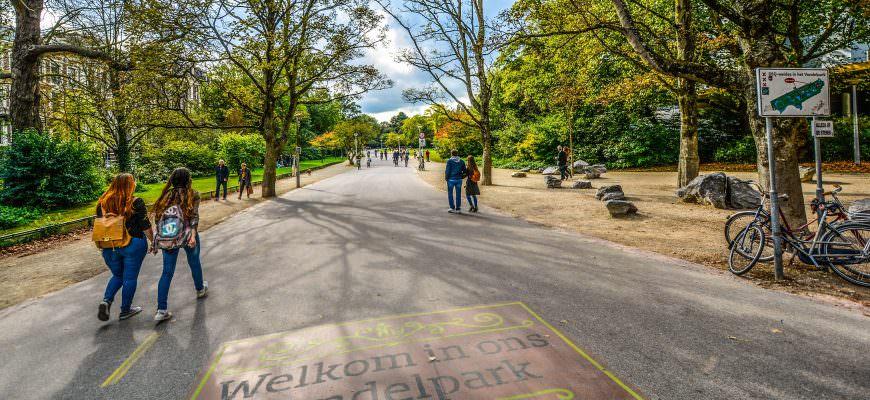 Take a wander around Vondelpark in Amsterdam city